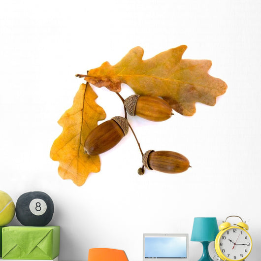 Beautiful Autumnal Oak Leaves Wall Decal