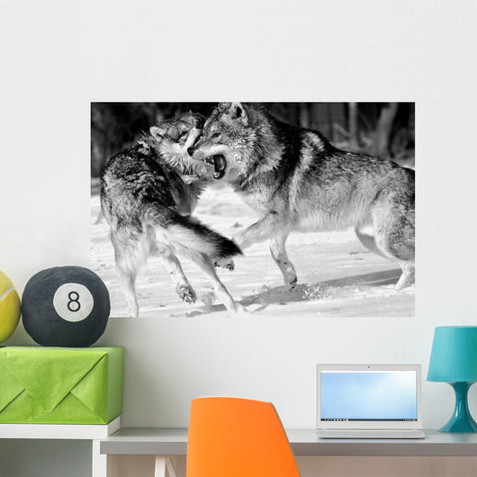 Wild Wolves Wall Mural