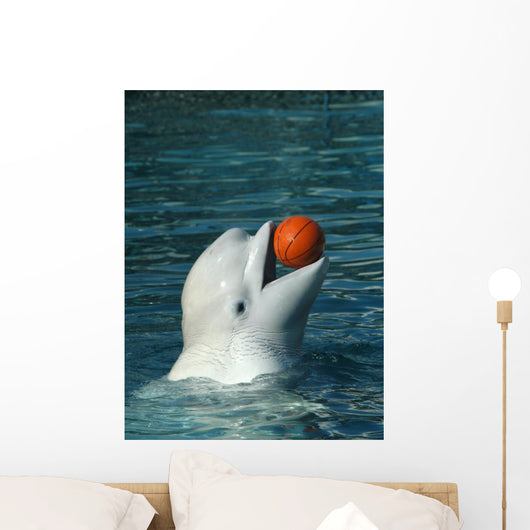 White Whale Playing Basketball Wall Mural