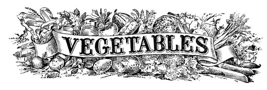 Historic illustration of vegetables with graphic banner Wall Mural