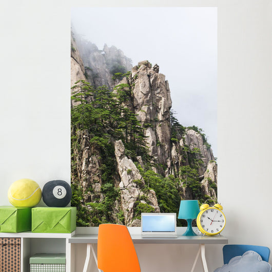 Granite peaks with pine trees in the North Sea Scenic area Wall Mural