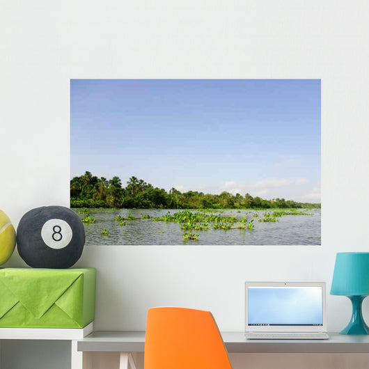 Orinoco Delta Wall Decal Wallmonkeys Com