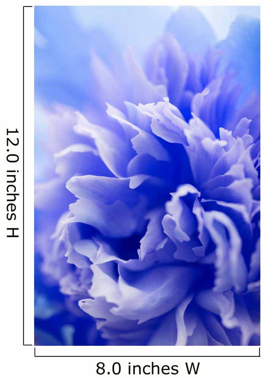 abstract blue flower background Wall Mural