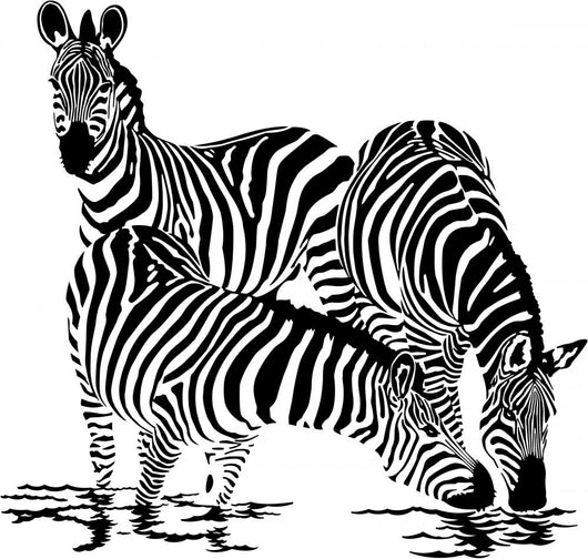 Three Zebras Drink Water Wall Decal