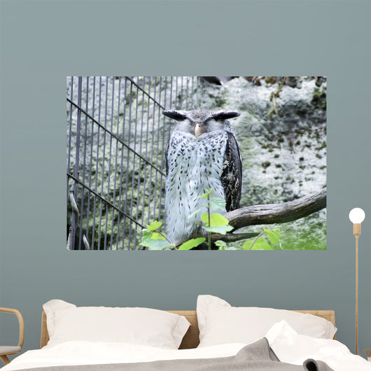 Snow Owl Wall Decal