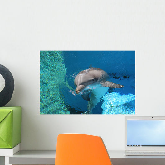 Dolphin Swimming Coral Reef Wall Decal