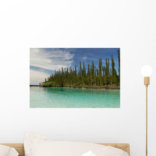 Natural Pool Ile Des Wall Decal