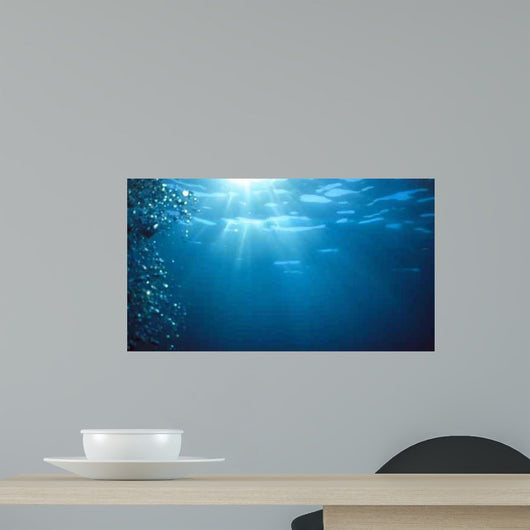 Underwater Sunlight Wall Decal