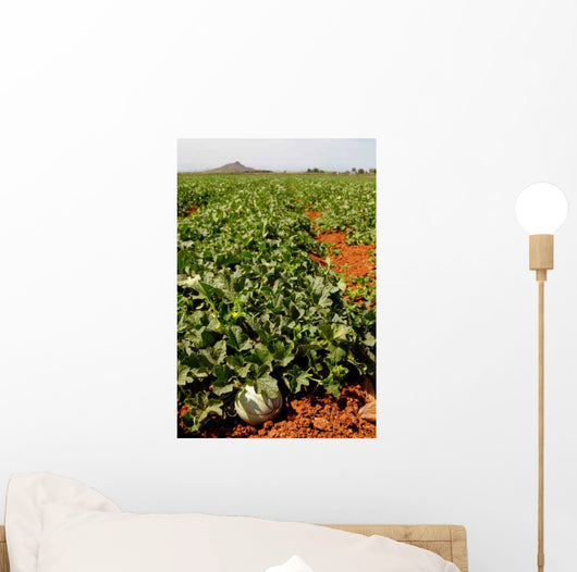Farm Fields Wall Decal Design 2