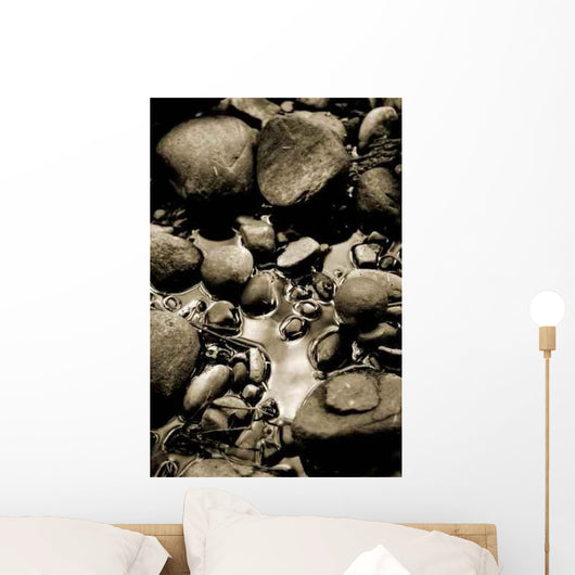 Rock Reflections Wall Decal