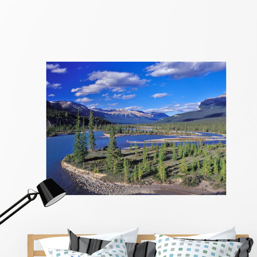 Meandering River Wall Decal