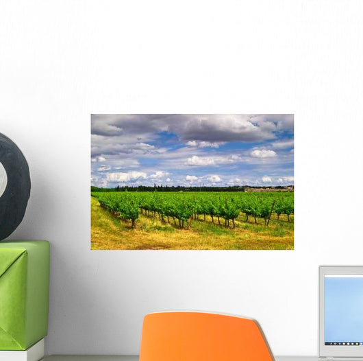 Vines Wall Decal