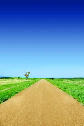 Straight Road and Blue Wall Decal