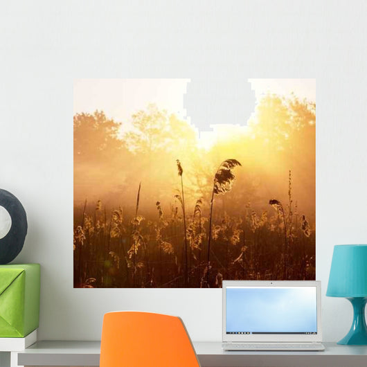 Misty Lake Wall Decal