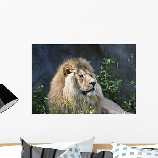 Lion Wall Decal Design 1