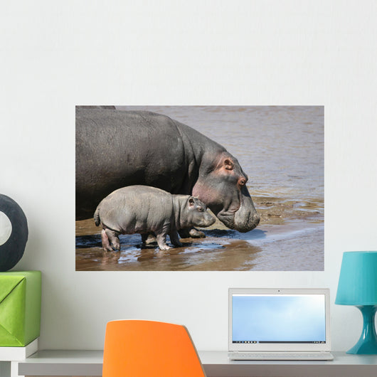 Hippo and Baby Wall Decal