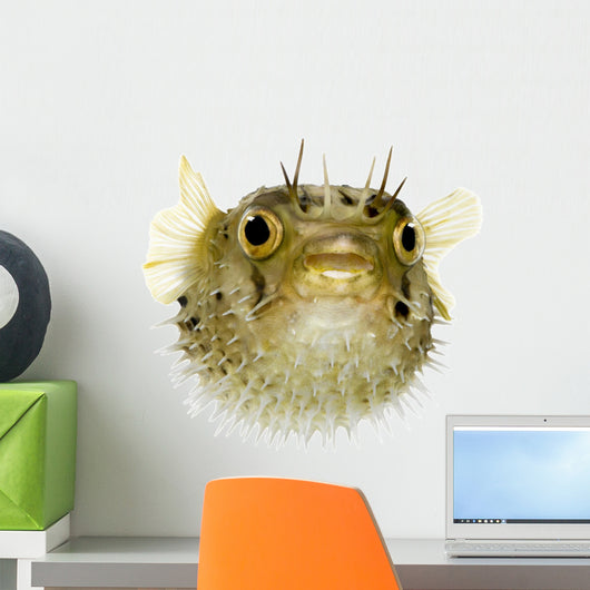 Long-Spine Porcupinefish Wall Decal