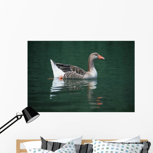 Duck On Water Wall Mural