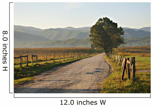 Gravel Road Smoky Mountains Wall Decal