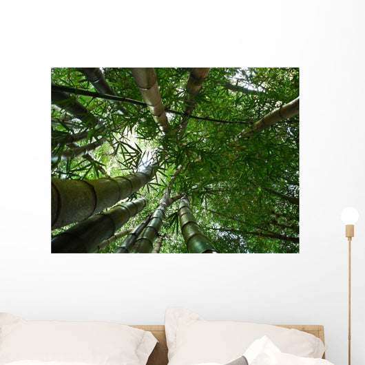 Bamboo Forest Wall Decal Design 4