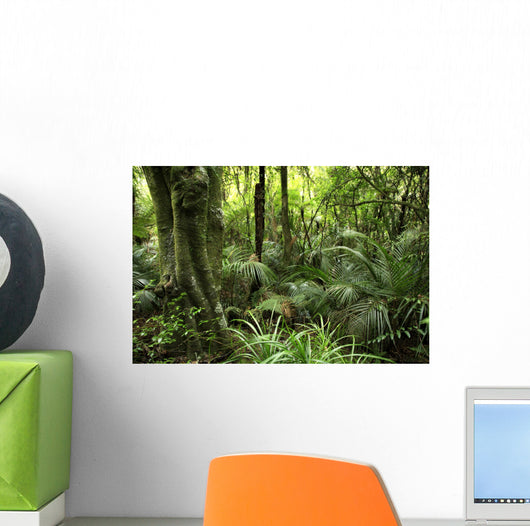 Tropical Forest Wall Decal Design 1