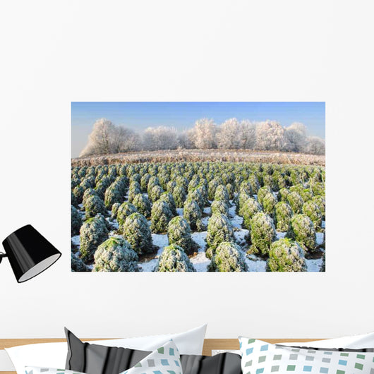 Bare Field Holland Winter Wall Decal