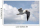 Seagull in Flight One Wall Mural