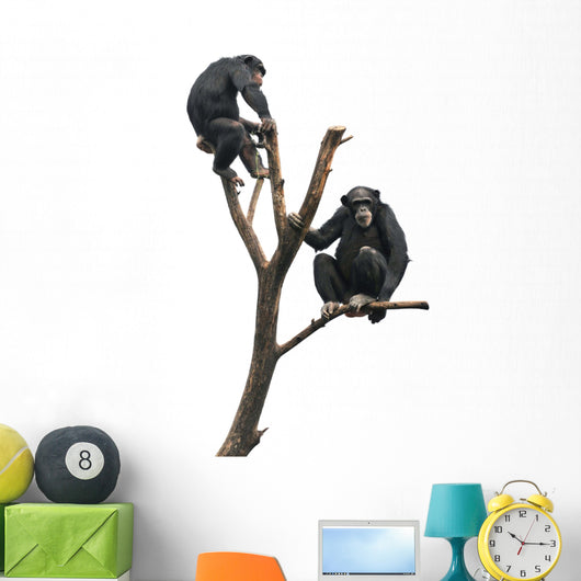 Chimpanzees on a Bare Tree Wall Decal