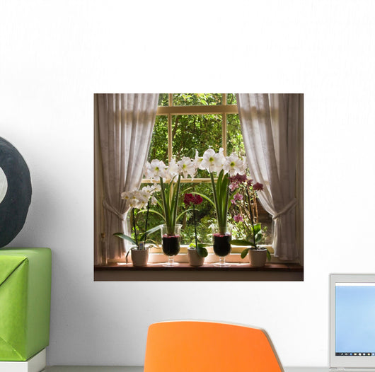 Zen Plant Display Beside Sunlight Wall Mural