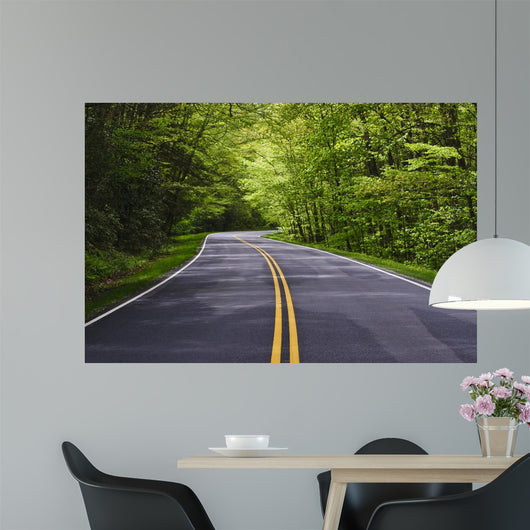 road with trees on both sides Wall Mural