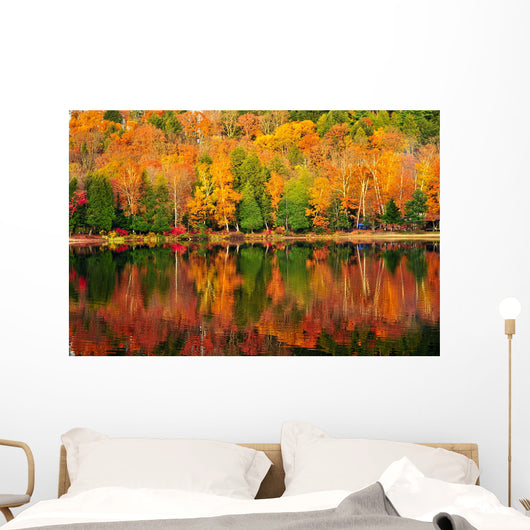 Fall Forest Reflections Wall Decal