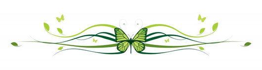 Elegant Butterfly Floral Border Wall Decal