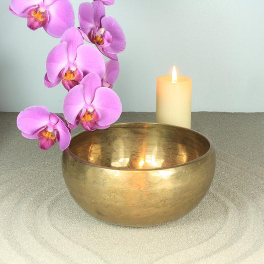Singing Bowl Orchid and Wall Decal