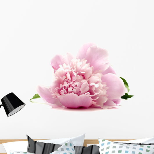 Pink Peony Wall Decal