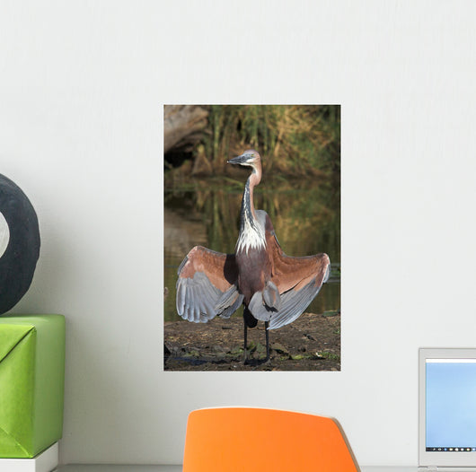 Goliath Heron Wall Mural