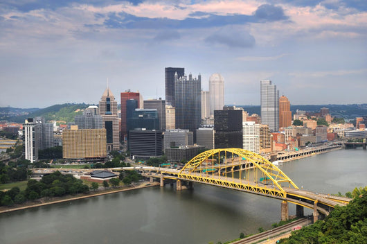 Pittsburgh Skyline During Daytime Wall Mural