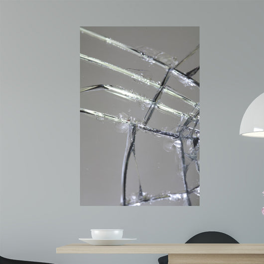Cracked Mirror 2 Wall Mural