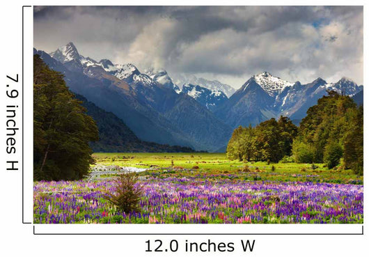 Mountain Landscape With Blossoming Field New Zealand Wall Mural