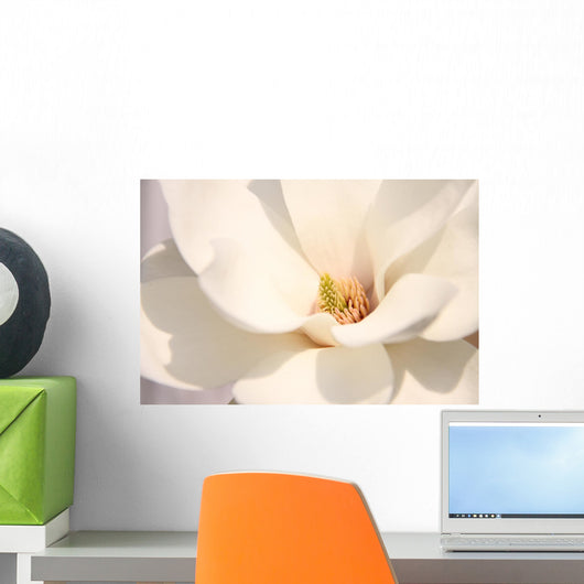 White magnolia flowers Wall Mural