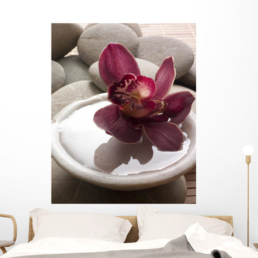 Orchid Close-up Bottom Pebbles Wall Mural