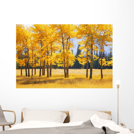 Trees In Autumn Wall Mural