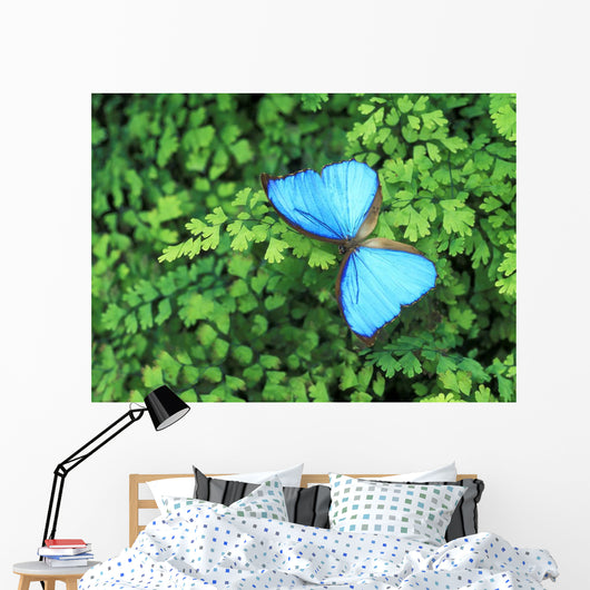 Blue Butterfly On A Plant Wall Mural