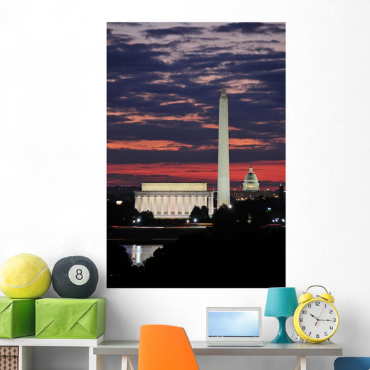 Washington DC Skyline Wall Mural