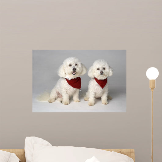 Pair Of Pedigree Dogs Wall Mural