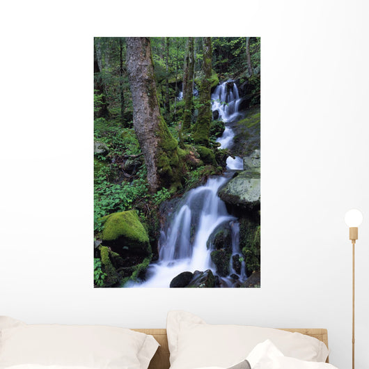 Waterfall Pouring Down Mountainside Wall Mural