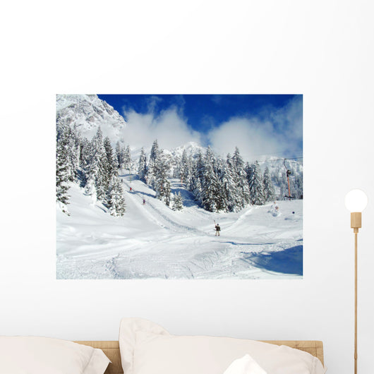 Skier on Winter Snow Wall Mural