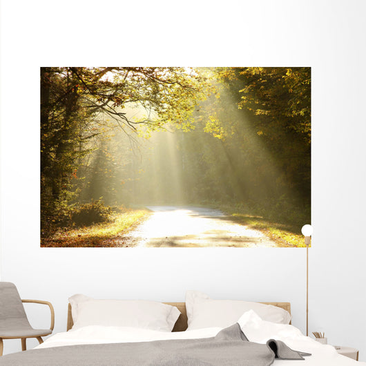 Autumn Scenery of the Forest Road Wall Mural