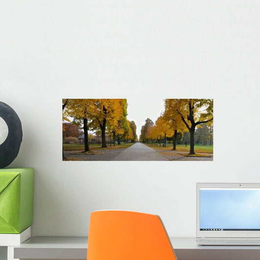 Avenue Trees Autumn Wall Mural
