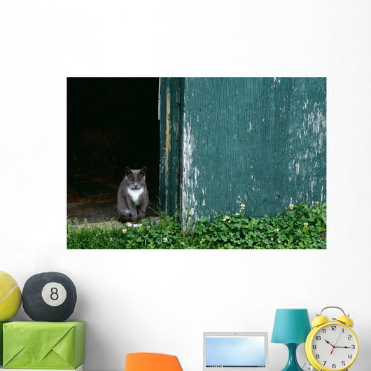 Cat In A Doorway Wall Mural