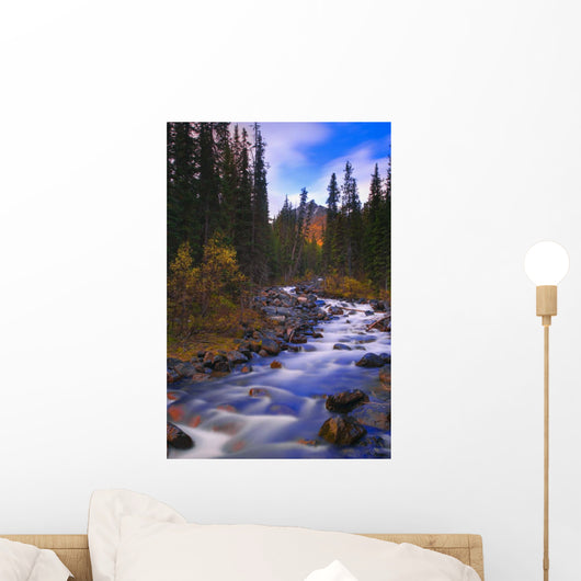 Moraine Creek, Banff National Park, Alberta, Canada Wall Mural